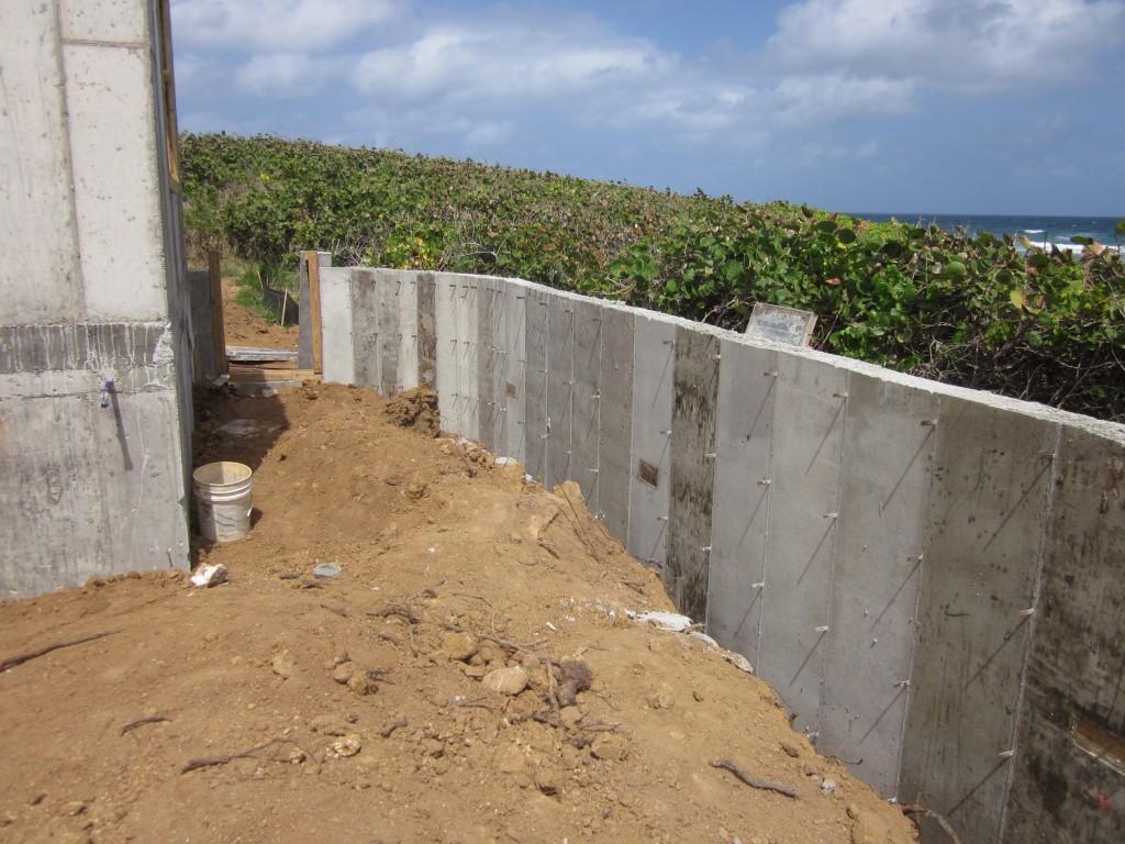 2-22-2011 - Garden Wall