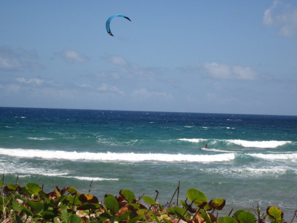 3-24-2011 - Another photo of the kite surfer